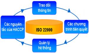 Tiêu chuẩn ISO22000 sản xuất thực phẩm